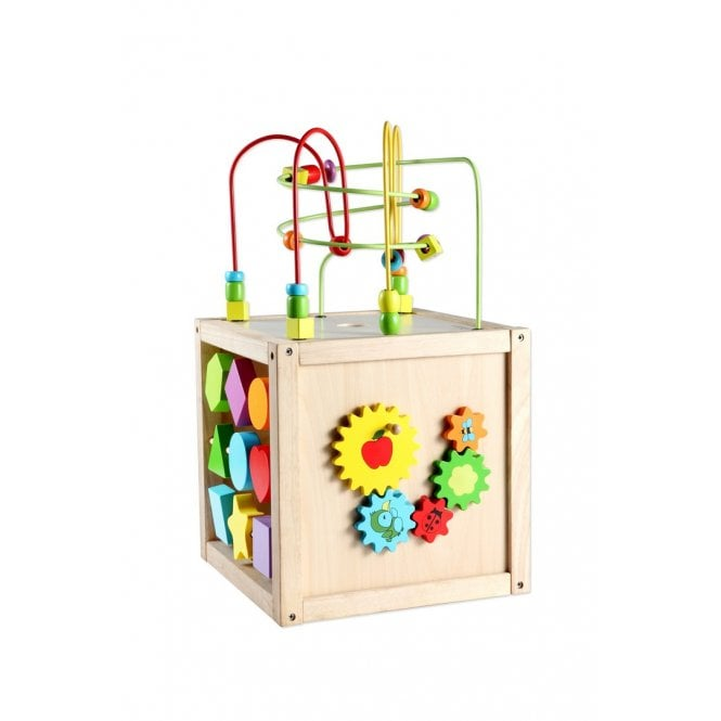 Multi-Activity Cube Large